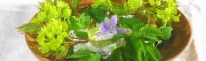 Frühlingssalat-blog